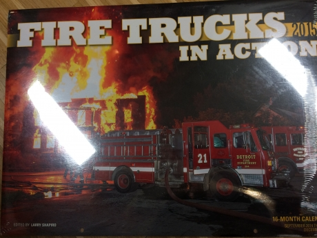 Firetrucks in Action 2015
